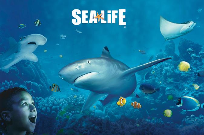 Sea Life Kansas City Aquarium Viator