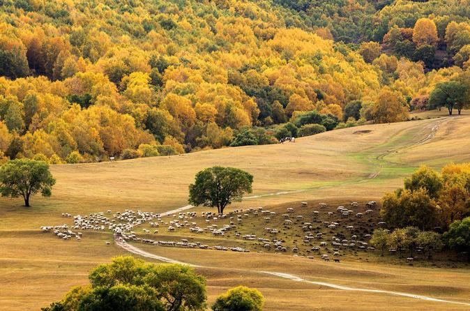 2 Days Beijing to Feng Ning Ba Shang Grassland tour with private transfer