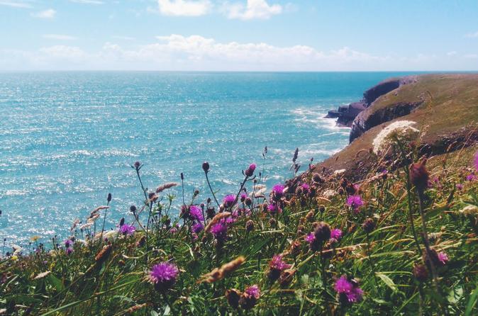 Pembrokeshire National Park 2 Day Tour - Cardiff