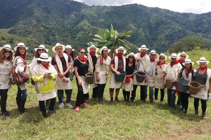 Coffee Tour In Medellin - Medellín