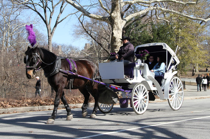 Central Park Horse And Carriage Ride With Professional Photographer - New York City