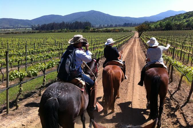 Casablanca Wine Tour and Horse Riding from Santiago
