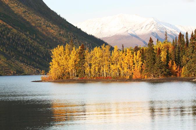 5-Day Golden Aurora Circle: Yukon and Alaska Summits