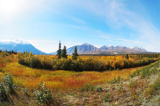 Arctic Day: Kluane National Park Tour - Whitehorse