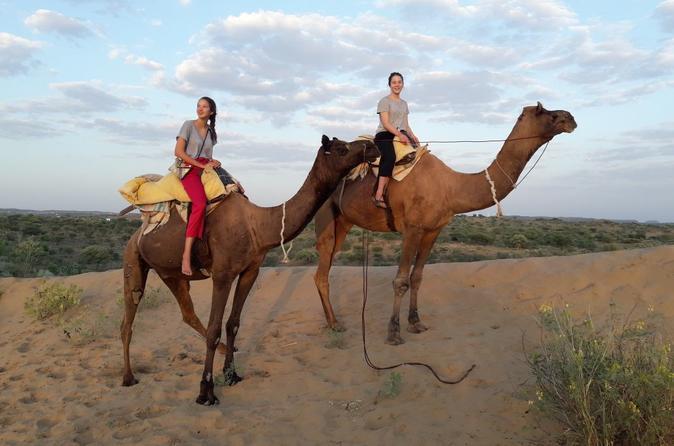 Camel Safari In Osian Desert Nearby Jodhpur