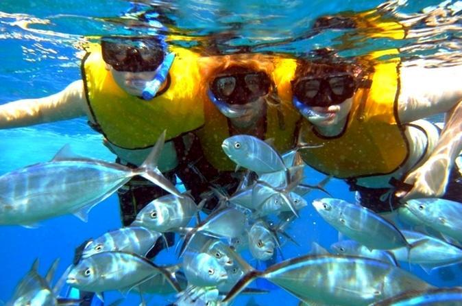 Viagem diurna a Isla Mujeres com tudo incluso de luxo, saindo de Cancún ou Riviera Maya