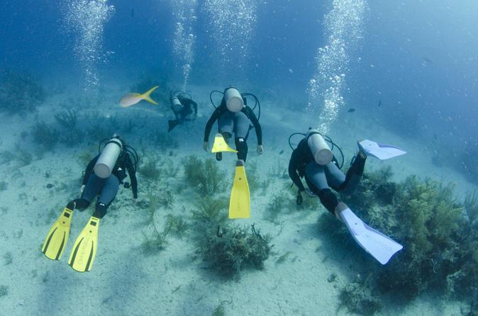 2-Tank Dive in Freeport