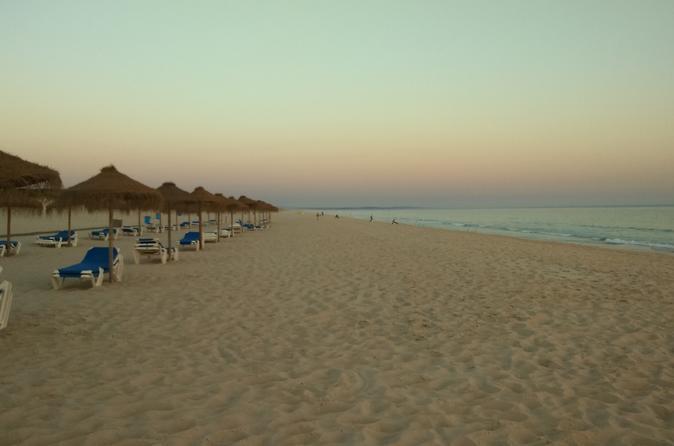 Private tour - Alentejo coast, Comporta beach, Sado Reserve, Alcacer do Sal
