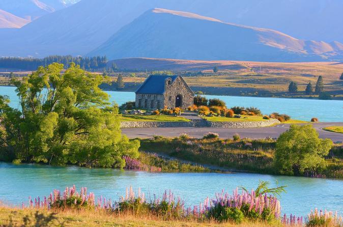 Lake Tekapo And Lake Pukaki Day Tour - Christchurch