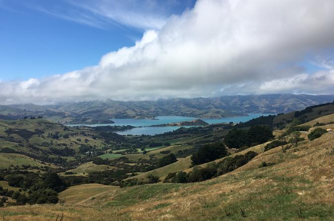 Private Akaroa Day Tour Including Harbour Cruise And Alpaca Farm Tour - Christchurch
