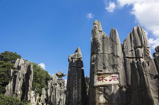 Private day tour of stone forest from kunming in kunming 234117
