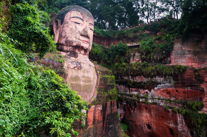 Private Panda And Leshan Giant Buddha Day Tour From Chengdu By Bullet Train