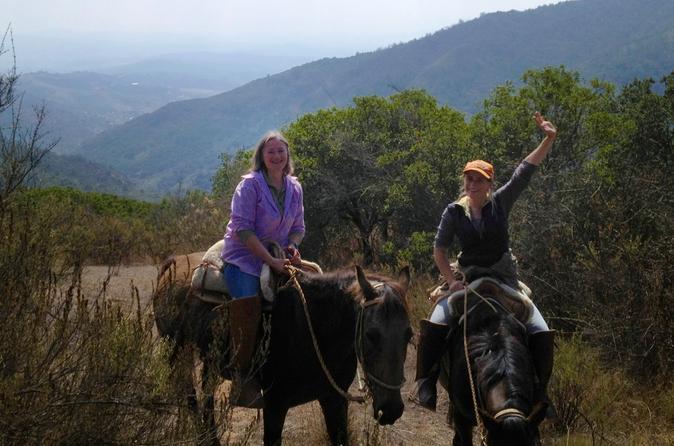 Chilean Precordillera Horseback Ride from Santiago