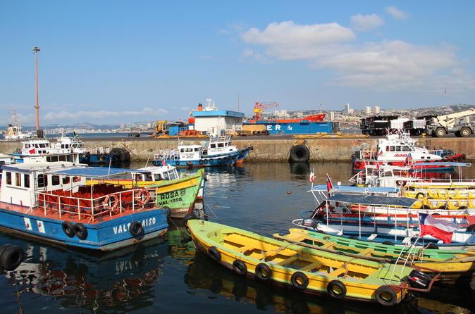 Explore the City of Valparaiso and ConCón from Santiago