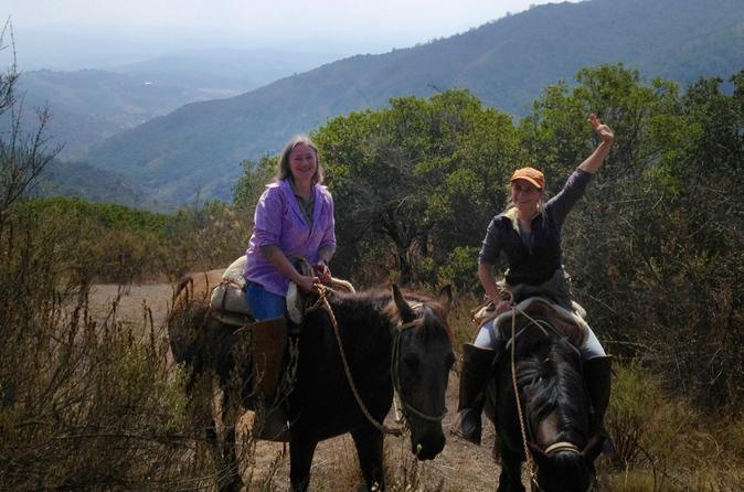 Passeio a cavalo Precordillera chilena, saindo de Valparaiso