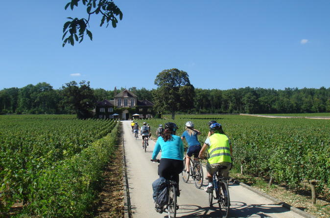 Burgundy bike tour with wine tasting from beaune in beaune 186846