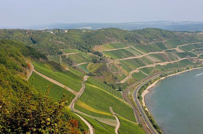 Boppard icewine and 30 minutes wine tasting in boppard 184475