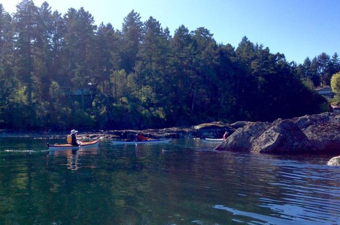 3-Hour Swartz Bay Kayak Tour and Restaurant Lunch