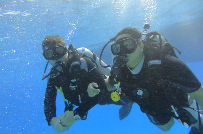Introduction to scuba diving in sharm el sheikh in sharm el sheikh 188153