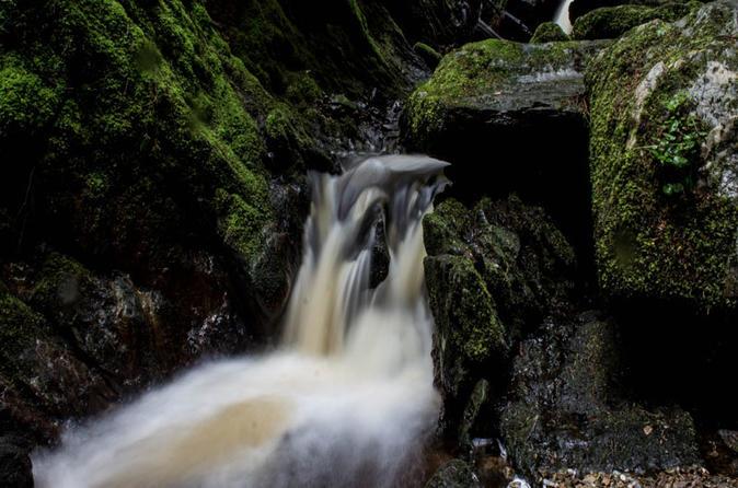 Enchanting Pucks Glen Forest Walk, Loch Lomond and Dumbarton Castle