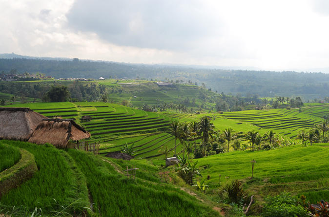 Private Tour: Bali Temple And Countryside Tour