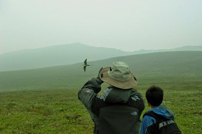 Private multi day denali national park camping and hiking trip in denali national park and 282318