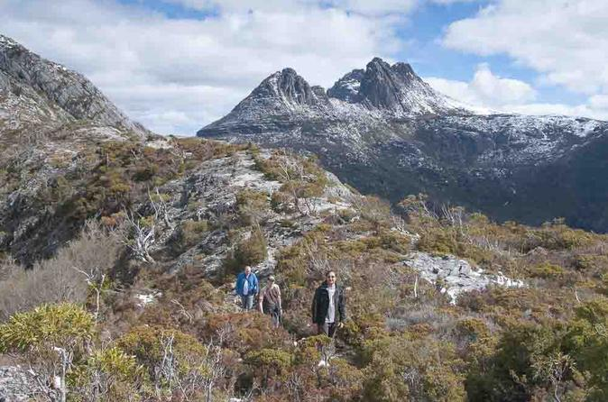 5-Day Tasmania West Coast Camping Tour: Hobart to Launceston Including Mount Field National Park, Tarkine and Cradle Mountain