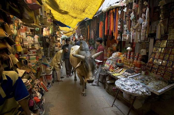 3-Hour Varanasi Walking Tour