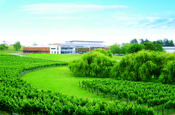 Wine Makers Experience from Auckland