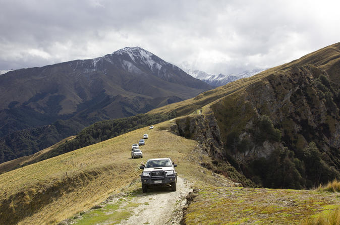 High Country Sheep Station private half day tour, Queenstown