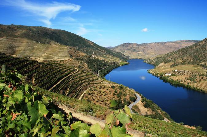 Excursão vinícola ao Vale do Douro: visita a três vinhas com degustação de vinhos e almoço