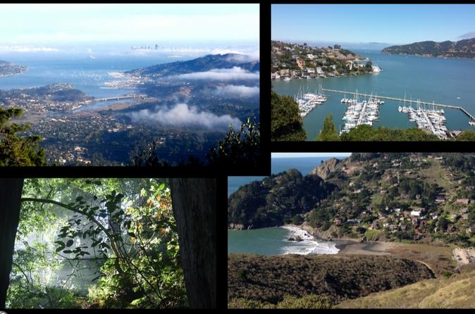 Muir Woods & Marin County Excursion