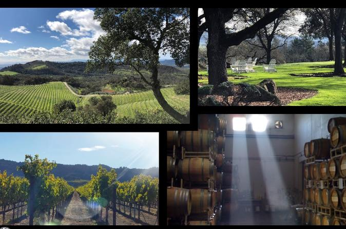 Napa Valley Wine Country Expedition