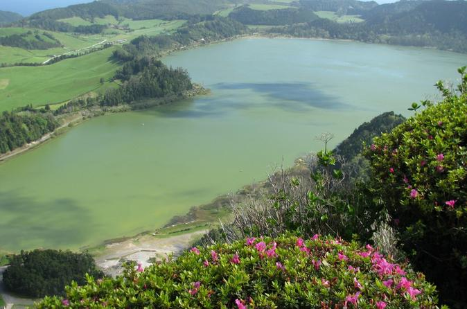 Full day furnas valley tour including lunch in ponta delgada 204078