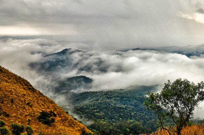 Trek to Kodachadri