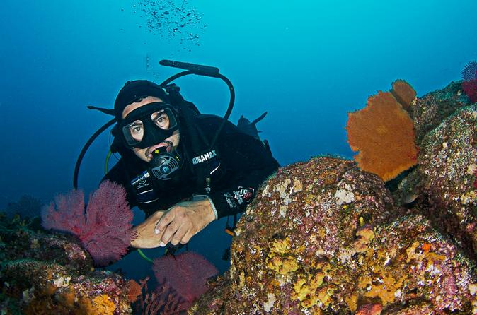 3-Day Cabo San Lucas Diving Package