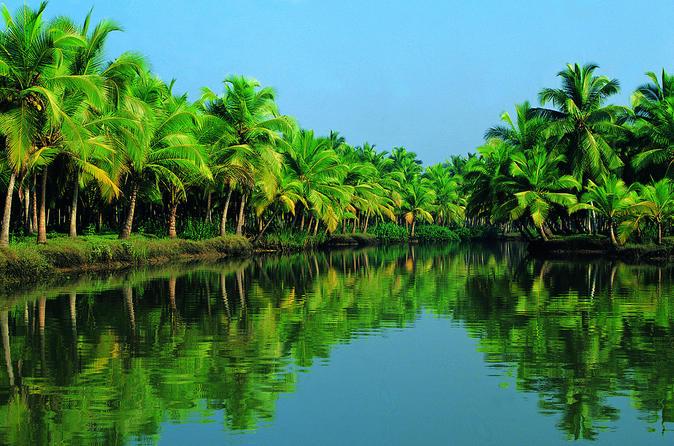 Azamara Special Kochi Shore Excursion: Fort Kochi and Backwater Houseboat Tour