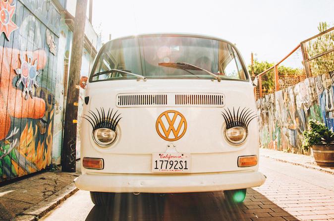 Painted Ladies San Francisco City Tours