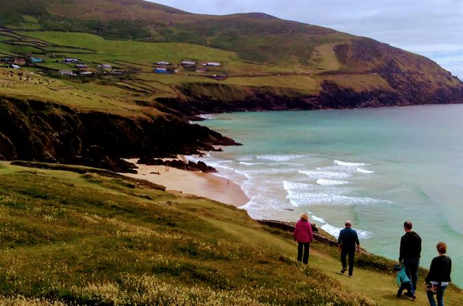Dingle DayTrips & Excursions