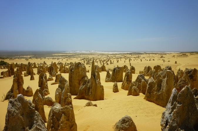 Pinnacles Desert Tour