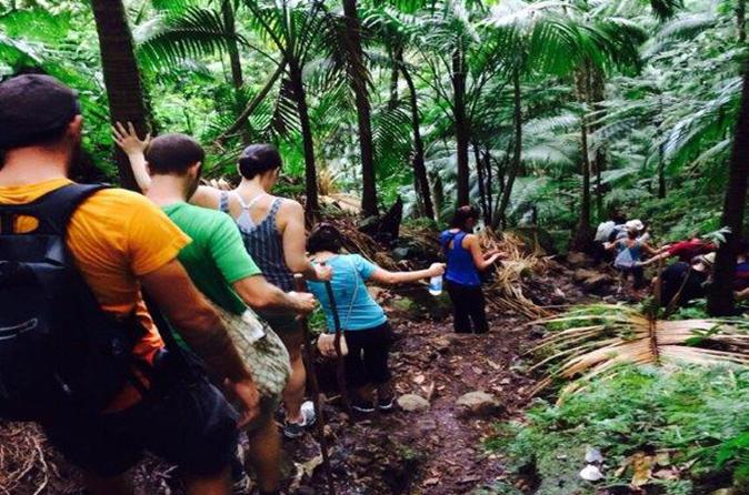 Hiking Mount Liamuiga Volcano in St Kitts