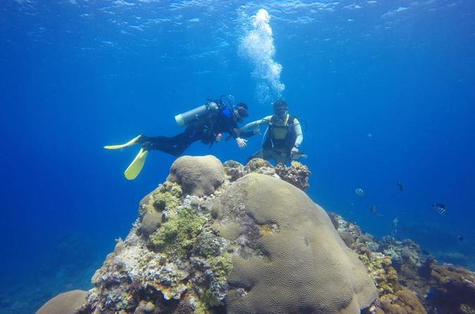 6 Days 5 Nights Taiwan Offshore Scuba Diving and Best Sight Seeing