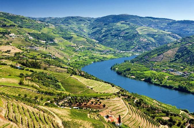 Excursão de dia inteiro com degustação de vinhos no Vale do Douro com almoço