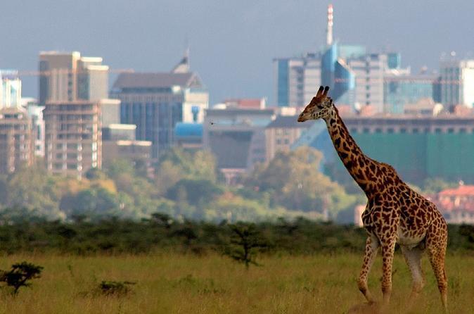 Nairobi National Park Wildlife Capital & Carnivore Restaurant Lunch
