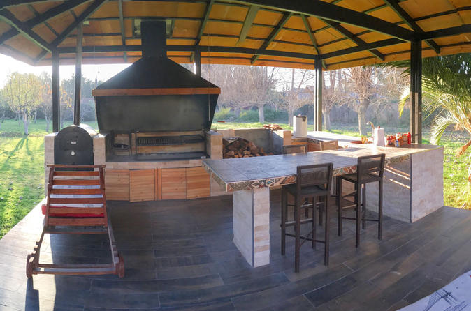 Learn to Cook with a Local: Private Cooking Lesson in the Santiago Countryside