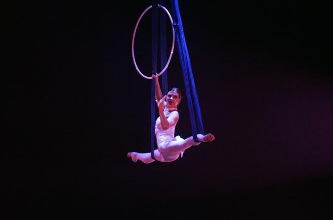 Acrobat show and authentic dim-sim teasing
