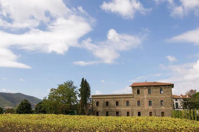 Tuscan wine tasting in val di chio in cortona 185015