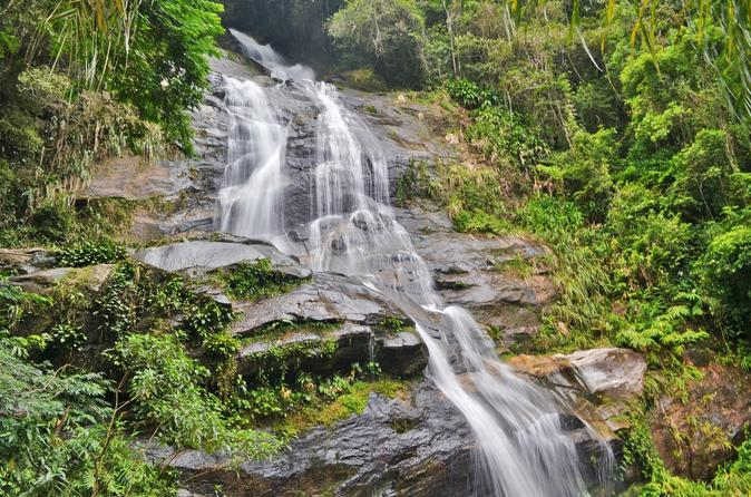 Tijuca National Park Customizable Private Tour in Rio de Janeiro