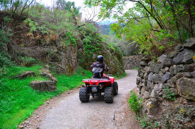 Mt Etna Off-Road Quad Bike