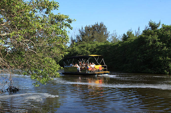 Pantanal carioca sightseeing boat tour with optional lunch in rio de janeiro 186801